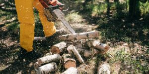 A Quick Glance at the Many Uses of Log Splitting Services Today – Things to Know